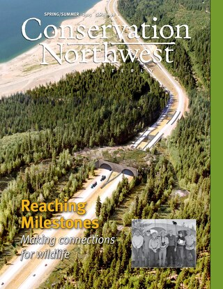 Spring/Summer 2015 Conservation Northwest Quarterly