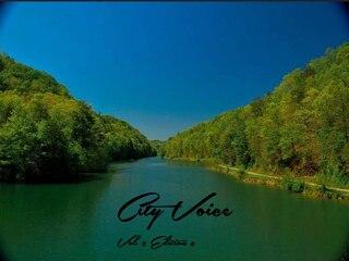 City Voice Vol. 2 Edition 8
