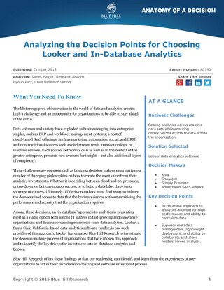 Analyzing the Decision Points for Choosing Looker - Blue Hill Research