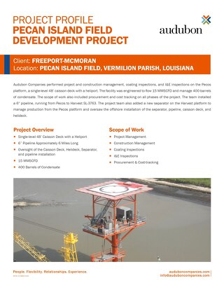 AFS - Pecan Island Field Development Project