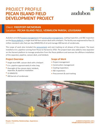 Pecan Island Field Development Project