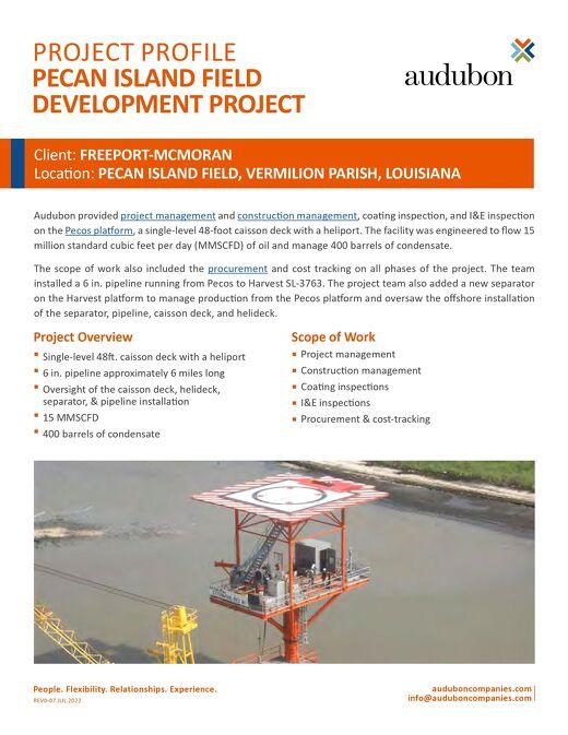 AFS - Pecan Island Field Development Project
