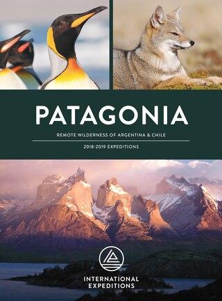 2018-2019 Patagonia