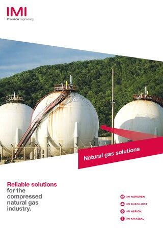 z7199BR - Natural Gas brochure