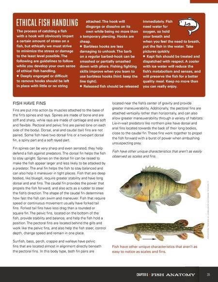 OutdoorNebraska - Going Fishing Guide