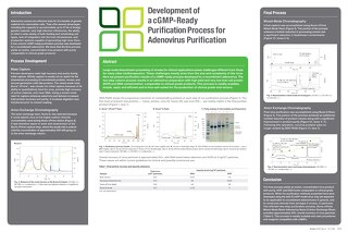 Development of a cGMP-Ready Purification Process