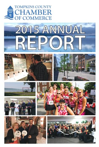 Annual Report_2015ONLINE