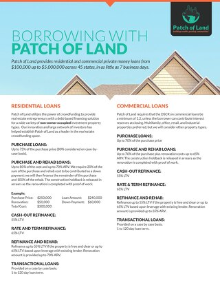 Patch of Land Lending Parameters & Borrowing Summary