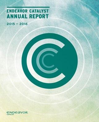2016 Endeavor Catalyst Annual Report