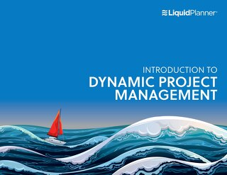 An Introduction to Dynamic Project Management