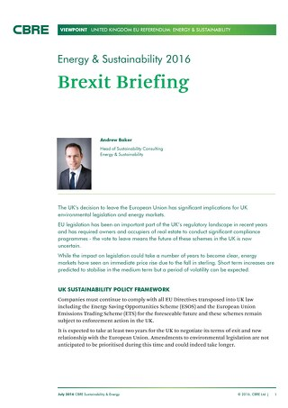 Energy and Sustainability Brexit Viewpoint