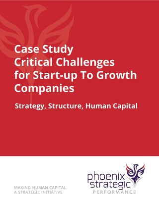Critical Challenges for Start-up to Growth Companies
