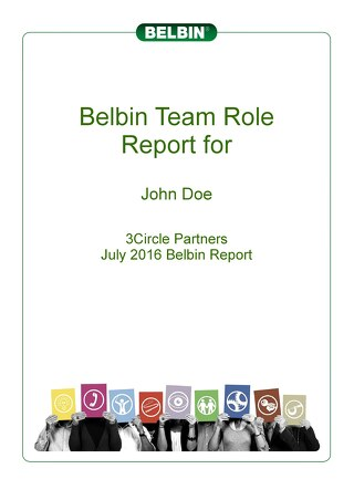 Sample -- Individual Belbin Report