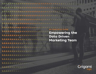 Executive Guide: Empowering the Data Driven Marketing Team