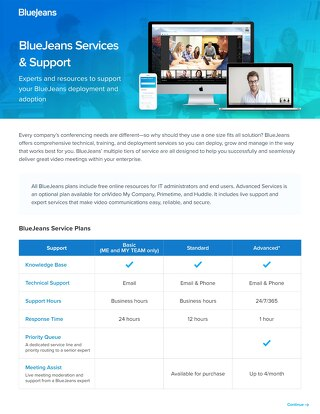 BlueJeans Services and Support