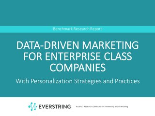 Data-Driven Marketing For Enterprise Class Companies