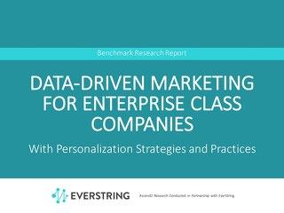Data-Driven Marketing For Enterprise Class Companies