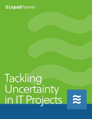 Tackling Uncertainty in IT Projects