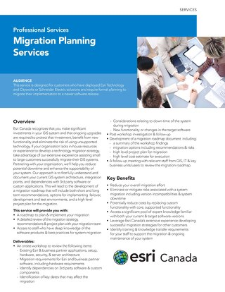 Migration Planning Services