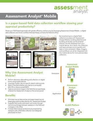 Assessment Analyst Mobile