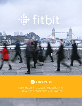 Fitbit Success Story