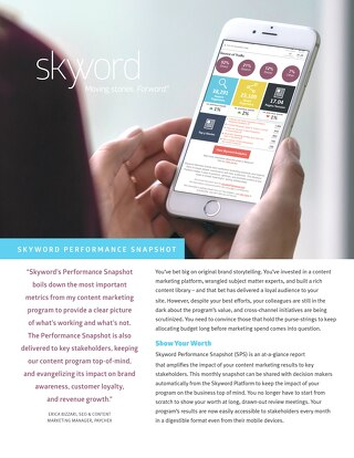 Skyword Performance Snapshot Dashboard Reporting