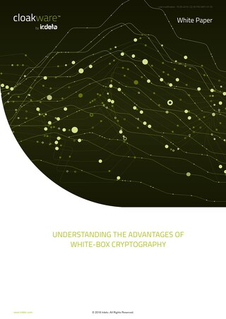 White Paper: Understanding the advantages of whitebox cryptography
