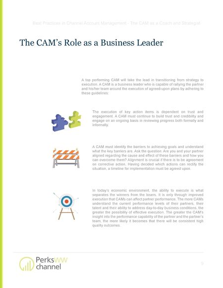 Ebooks Best Practices In Channel Account Management The Cam As A