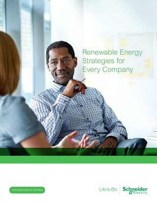 Renewable Energy Strategies for Every Company