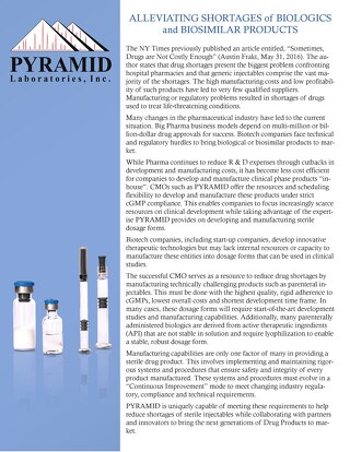 Article_Pyramid_Labs