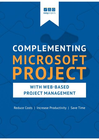 Complementing MS Projects