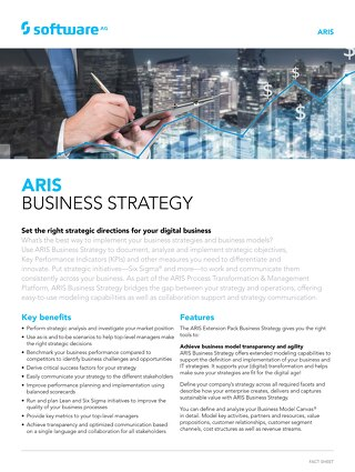 Facts about ARIS Business Strategy