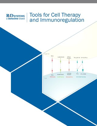 rnd-systems-cell-therapy-immuno-br