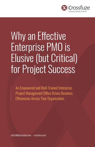 Why an Effective Enterprise PMO is Elusive (but Critical) for Project Success