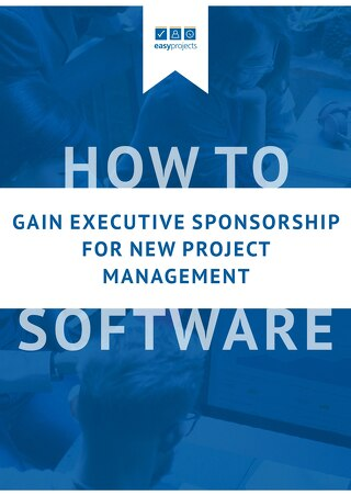 How to Get Executive Sponsorship