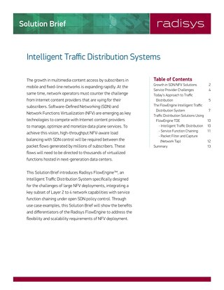 Intelligent Traffic Distribution Systems