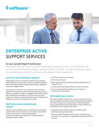 Enterprise Active Support Services