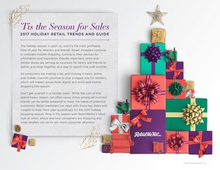 2017 Holiday Insights Guide