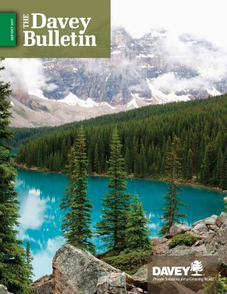The Davey Bulletin Sept-Oct 2017