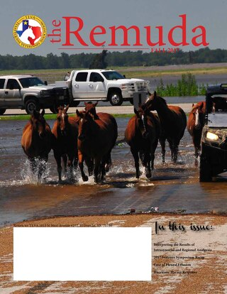 The Remuda Fall 2017