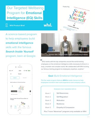 Product Brief: Our Targeted Wellbeing Program for Emotional Intelligence (EQ) Skills