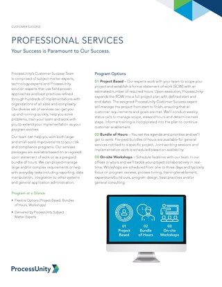 ProcessUnity Professional Services