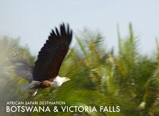 Safari destiantion Botswana & Victoria Falls