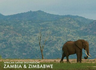 Safari destinations Zambia & Zimbabwe