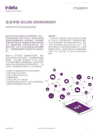 安全环境 SECURE ENVIRONMENT: 保护数字资产免受边界安全漏洞威胁