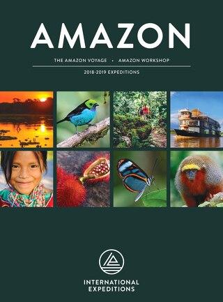 Amazon 2018-2019