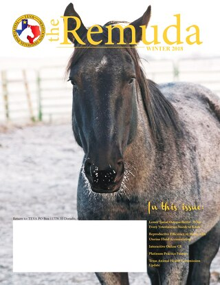 The Remuda Winter 2018