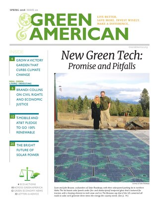 Green American #111, Spring 2018