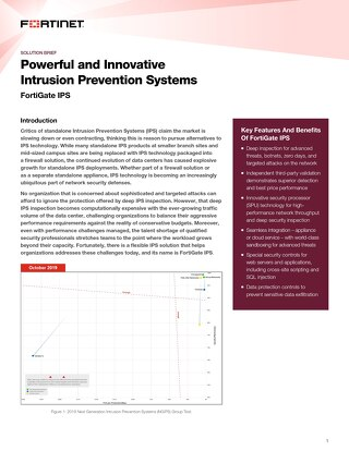 Powerful and Innovative Intrusion Prevention Systems