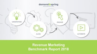 Demand Spring - Revenue Marketing Survey